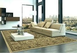 area rugs outdoor costco thomasville