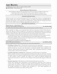 Sample Hr Professional Consultant Resume 10 Hr Professional Resume Sample Resume Samples