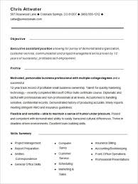 Functional Resume Example | Musiccityspiritsandcocktail.com