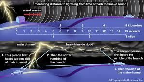 Joe Bruno Stadium Seating Chart Https Www Britannica Com Science Ligament 2019 11 04