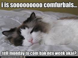 Image result for horrible monday funny pictures