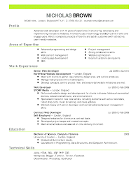 Nice Fake Resume Builder Ideas Example Resume And Template Ideas