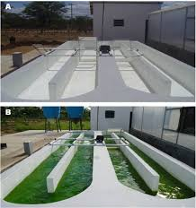 Design Of Raceway Ponds For Producing Microalgae Cultivation Of Chlorella Vulgaris In Medium Supplemented