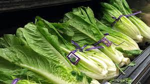 E. coli outbreak: 102 sick from Salinas, California romaine lettuce