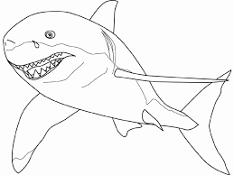 Small Picture Shark Coloring Pages Shark SharkColoringPages