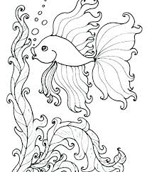Marine Life Coloring Pages 488websitedesigncom