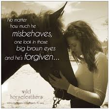 Beautiful Cowgirl Quotes Best of Horse Quotes And Sayings Cowgirl Quotes And Sayings About Horses