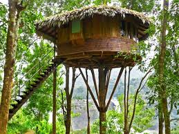 Dream Catcher Kerala Top 100 Tree House Resorts in Kerala Kerala Backwaters Blog 71