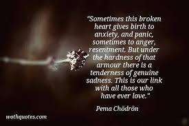 Pema Chodron Quotes Classy Quotes Pema Chodron Quotes Death