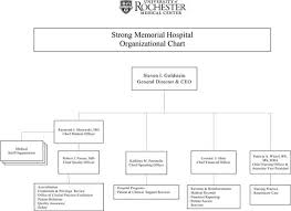 Download Hospital Organizational Chart 3 For Free