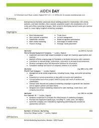 Marketing Resume Custom Digital Marketing Strategist Page Resume Samples Wonderful Templates