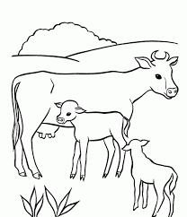 Small Picture Awesome Cow Coloring Sheet Contemporary New Printable Coloring