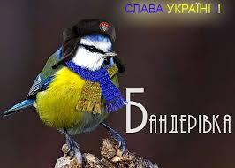 """""""С """"Оливье"""" и шашлыками, но в полной боевой готовности"""": украинские десантники встретили Новый год на передовой - Цензор.НЕТ 8049"""