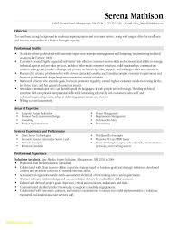 Construction Project Manager Resume Template Fascinating Construction Project Manager Resume Elegant Construction Project