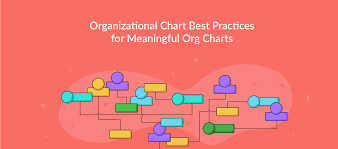 Ptv Org Chart Org Chart Best Practices For Effective Organizational Charts