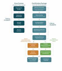 Coach Training Program Flowchart Flow Chart For Training