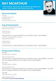stylish graphical cv templates in ms word for you to      light blue graphical cv template