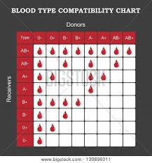 Blood Type Vector Photo Free Trial Bigstock