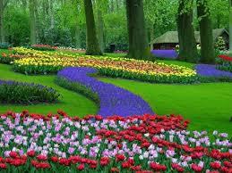 المناظر الطبيعية في هولندا Images?q=tbn:ANd9GcSDQGAIvYyUNGgf7A0enRBeQIXA7RrXOfUvWUYUmbFJqzbRKZwG8A
