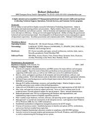 Project Manager Resume Summary Examples IT manager resume consist of objective or summary skills and also 10