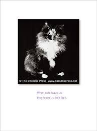 Card For Loss Of Pet Pet Sympathy Cards The Borealis Press Inc