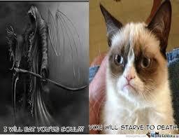 Grumpy Cat Has No Soul!! by southeastland - Meme Center via Relatably.com
