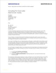 Cover Letter Job Application Sample – Hflser