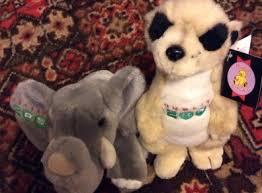 dublin zoo elephant meerkat