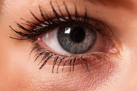 this is the related images of Eye Photography Tips