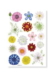 Greeting Card Assorted Small Flowers