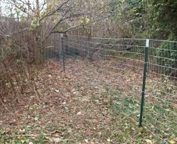 welded wire dog fence. Remarkable Welded Wire Dog Fence Home Gardens Geek Welded Wire Dog Fence G