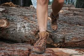 Walking Logs Low Section Of Woman Walking On Logs In Forest Buy This Stock
