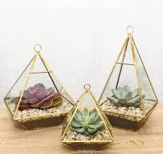 geometric diamond glass vase succulent terrarium