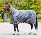 Billiga täcken till häst