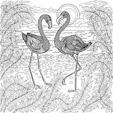 Nieuw Kleurplaten Voor Volwassenen Vogels Krijg Duizenden