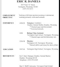 Example Of A Basic Resume Resume Template Sample