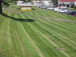 Lawn Care Business Lawncarebusiness Net