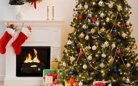 christmas trees decorated professionally with presents.  Trees The Perfect Christmas Tree For Trees Decorated Professionally With Presents U