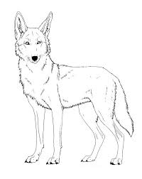 Small Picture Printable Coyote Coloring Pages Coloring Me