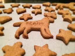 this peanut er dog treat recipe are made in the shape of donuts and ered in carob icing to