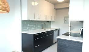 Ikea Kitchen Designer Best Design Ideas