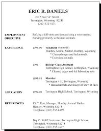 Microsoft Word Template Resume Amazing Resume Layout Template Resume Layout No Job Experience Marvelous