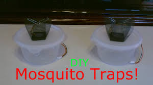 homemade mosquito trap the diy mosquito trap improved easy diy you