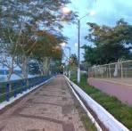 imagem de Porto Franco Maranhão n-5