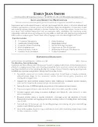 Special Insurance Agency Office Manager Resume Insurance Executive