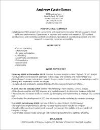 Resume Templates: Seo Analyst Resume