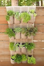 4 repurposed shoe rack planter