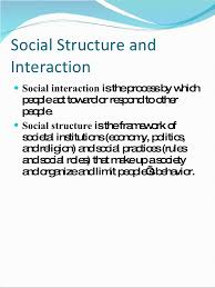 in class session society social structure essay review social structure and interaction