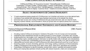 Resume Polishing Service San Antonio Writing Services Amusing Writer 5  Example 4 2