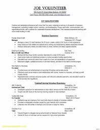 Inspirational Resume Sample Own Business Margorochelle Com